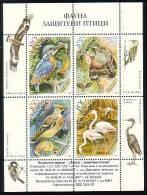 BULGARIA \ BULGARIE - 2007 - Oiseaux - Protection De La Nature - PF Du 4 Tim.** - Oiseaux