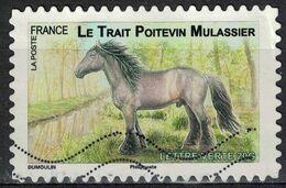 FRANCE Oblitéré Used Stamp Cheval De Trait Le Poitevin Mulassier 2013 - France