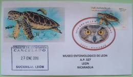 """Nicaragua 2010 Special Cancel """"Biodiversity Year"""" Cover On Turtle Stamps Overprinted 1981 Sent Locally - Nicaragua"""