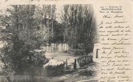 Hérault- Environs De Montpellier -Parc De Montplaisir. - Montpellier