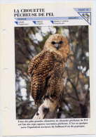 Fiche Double--La Chouette Pêcheuse De PEL-- Oiseau Fiche Illustrée Documentée --format  170mm X 240 Mm - Animaux