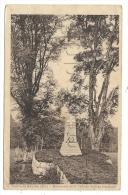 Metzeral (68) : Le Monument De La Ville De Nce Au Gaschney Vallée De Munster Env 1921. - Otros Municipios