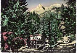 CLES MERAVIGLIOSE PINETTE DI TOVEL CON IL NUOVO ALBERGO ALBERGHI 1958 - Trento
