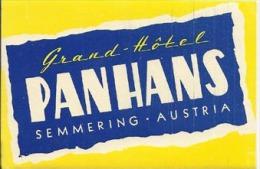 Etiquette De Bagage - Grand Hotel Panhans - Semmering (Autriche) - Hotel Labels