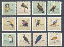 POLONIA.   YVERT 1070/81 * - Birds