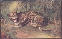 Raphael Tuck Und Sons Oilette Leopard  Wild Animals - Animaux & Faune