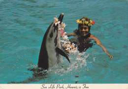 Woman Swimming With Porpoise, Sea Life Park, Makapuu Point, Hawaii, PU-1974 - Sonstige