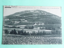 Saint SAGER - Ces Coteaux Produisent Des Vins Renommés Dans Le Monde Entier - Other Municipalities