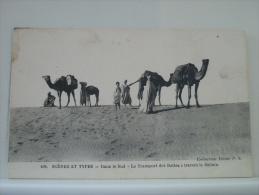 SCENES ET TYPES - DANS LE SUD - LE TRANSPORT DES DATTES A TRAVERS LE SAHARA - 1919 - (EDITIONS IDEALE P.S. N° 408) - Morocco