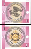 Kyrgyzstan 1 Tiyin Eagle Banknotes Uncirculated UNC - Unclassified