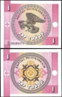 Kyrgyzstan 1 Tiyin Eagle Banknotes Uncirculated UNC - Bankbiljetten