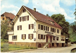 MURGTAL - Luftkurort Langenbrand - Gasthaus - Pension Murgtäler Hof - W-2 - Forbach