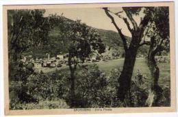SPOTORNO - DALLA PINETA   (SV) - Savona