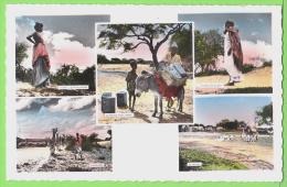 LE VISAGE DU PAYS SOMAIL / LA VIE DE TOUS LES JOURS ..... / Carte Vierge - Somalie