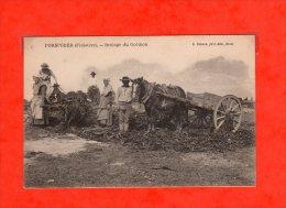 *29 Porspoder -brulage Du Goemon  R Boelle,phot-edite,brest - France