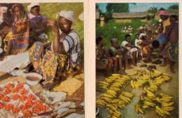FAUNAFLOR CONGO: 61 Photos 10,7x7,7cm - Côte D'Or