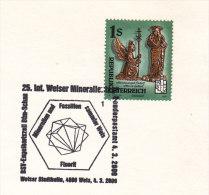 2000 Austria Wels Mineralien Fossilien Minerals Fossils Mineraux Minerali Fossili Mineralogie Geology - Geology