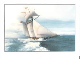 "Pride Of Baltimore II  Maryland´s Goodwill Ambassador   8.5"" X 6""   21.5 Cm X 15 Cm - Velieri"