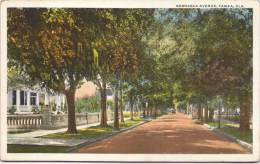 Nebraska Avenue, Tampa - Tampa