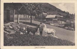 Parc D'acclimatation Des Geneveys Sur Coffrane Camille Droz Et Les 2 Lamas - NE Neuchâtel