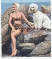 """PIN  UP AVEC CHIEN   """"  """"  ANNEE 60  CPSM / CPM  10 X 15  NEUVE - Pin-Ups"""
