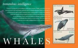guy1218sh Guyana 2012 Whales s/s Orca