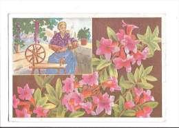 FLEURS DES ALPES. - N°9. Rhododendrons. (Fleur, Costumes, Illustrateur) - France