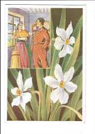 FLEURS DES ALPES. - N°2. Narcisses. (Fleur, Costumes, Illustrateur) - France