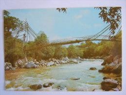 Colombia Colombie Belalcazar (Cauca) Instituto De Antropologia Puente Indigena De Avirama, Tierradentro Pont Bridge - Colombie