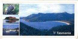 (020) Australia - Tasmania Wilderness (with Wombat) - Wilderness