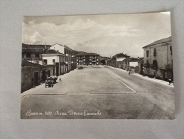 BUSACA (m.500) PIAZZA VITTORIO EMANUELE DEL 1954 NON VIAGGIATA - Cuneo