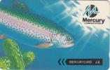 UK - The Trout/Mercury One2one(MER485), CN : 40MERB, Tirage 76001, Used - United Kingdom