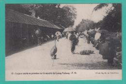 LUANG PRABANG [Laos] --> La Grue Sacrée Se Promène Sur Le Marché - Laos