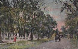 Florida Jacksonville Riverside Avenue At The Bend - Jacksonville