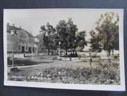 AK LEOPOLDSDORF Im Marchfeld Gänserndorf   //  D*8194 - Gänserndorf
