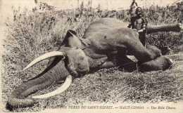 Afrique: Haut-Congo - Une Belle Chasse - éléphant - Missions Des Pères Du Saint-Esprit - Non Voyagée. - Congo Français - Autres