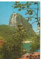 PAO DE AZUCAR  RIO DE JANEIRO   OHL - Rio De Janeiro