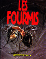 Bernard Werber & Patrice Serres - Les Fourmis - L'Écho Des Savanes / Albin Michel - ( 1994 ) . - Bücher, Zeitschriften, Comics