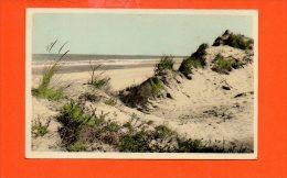 COQ Sur MER : La Dune, Ourlet De La Mer (écrite Et Voyagée) - De Haan