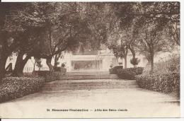 Algérie -   Hammam-Meskoutine - Allée Des Bains Chauds - Cachet Postal 28 Décembre 1932 - Autres Villes