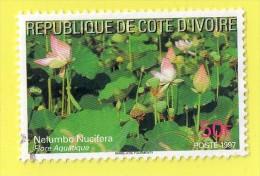 """REPUBLIQUE DE COTE D'IVOIRE  """"""""  50  F.  """""""",, FLORE AQUATIQUE    ,, POSTE 1997  ,,,,TBE - Ivory Coast (1960-...)"""