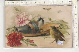 PO0392C# UCCELLI BIRDS - FIORI - ILLUSTRATORE KLEIN ?  VG 1905 - Birds