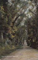 GT OAKLEY - THE AVENUE - Northamptonshire
