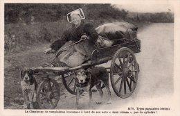 """Cpa  """"types Populaires Bretons"""" , Bretonne Et Son Attelage De 2 Chiens..colect Villard A Quimper - Bretagne"""