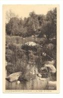 Cp, 79, St-Loup-sur-Thouet, La Vallée Du Cesbron - Saint Loup Lamaire