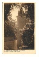 Cp, 79, St-Loup-sur-Thouet, Un Aspect Du Donjon Vu Du Nord Est - Saint Loup Lamaire