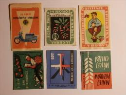 Poland 6 Old  Matchbox Labels - Boites D'allumettes - Etiquettes