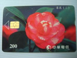 Taiwan Phonecard: Flower: Camellia Japonica - Taiwan (Formosa)