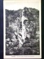 LOMBARDIA -VARESE -SARIGO -F.P. LOTTO N°298 - Varese
