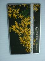 Taiwan Phonecard: Flowers Of Senecio Crataegifolius Hayata - Taiwan (Formosa)